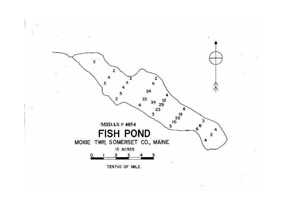 Lakes of maine lake overview fish pond moxie gore for Koi pond depth