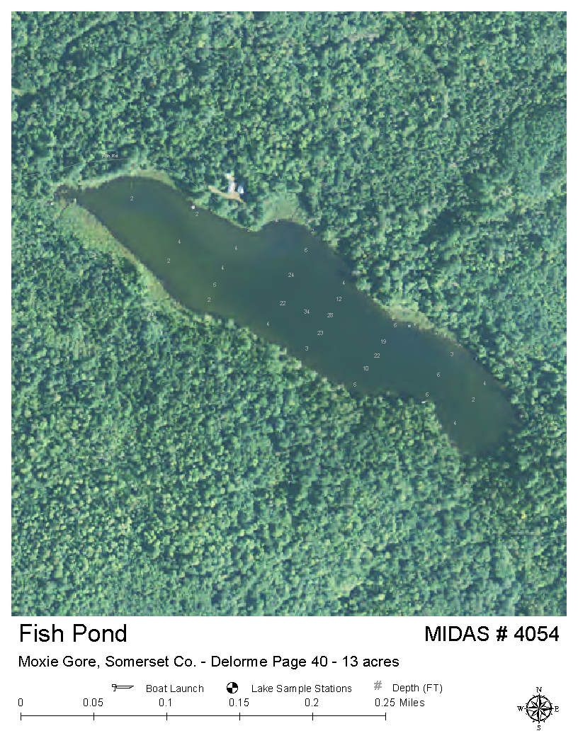 Lakes of maine lake overview fish pond moxie gore for Garden pond depth