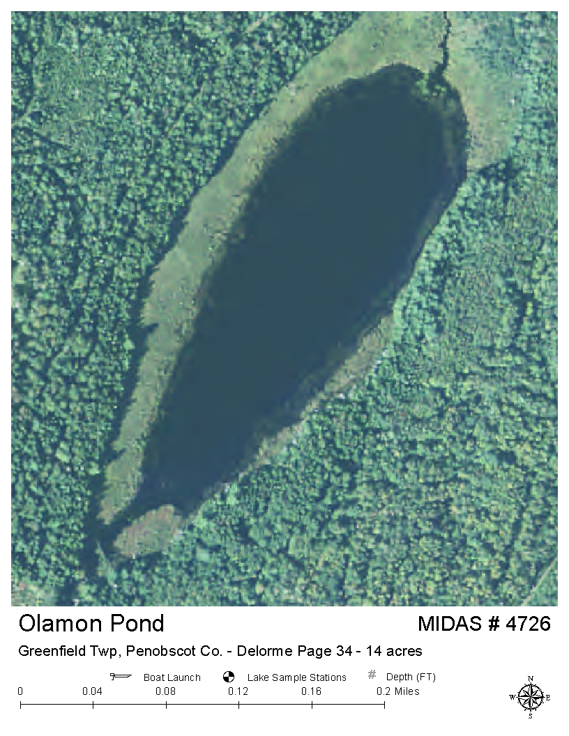 Lakes of maine lake overview olamon pond greenfield for Pond depth for fish