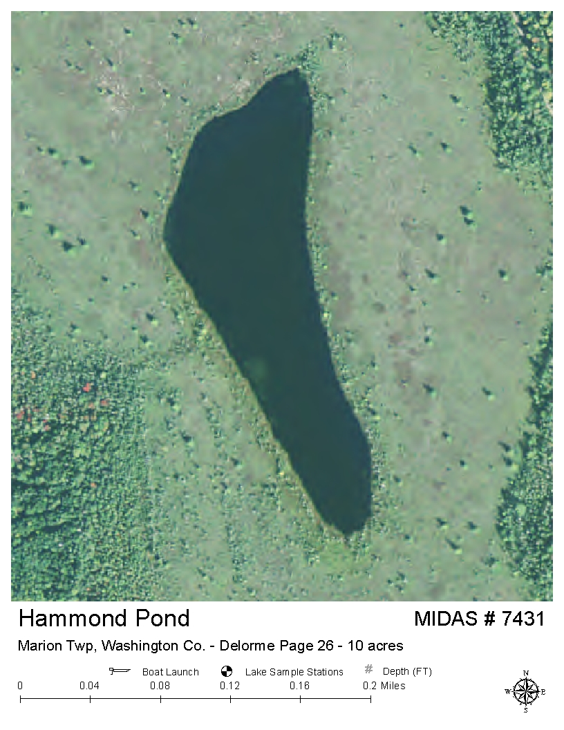 Lakes of maine lake overview hammond pond marion twp for Pond depth for fish