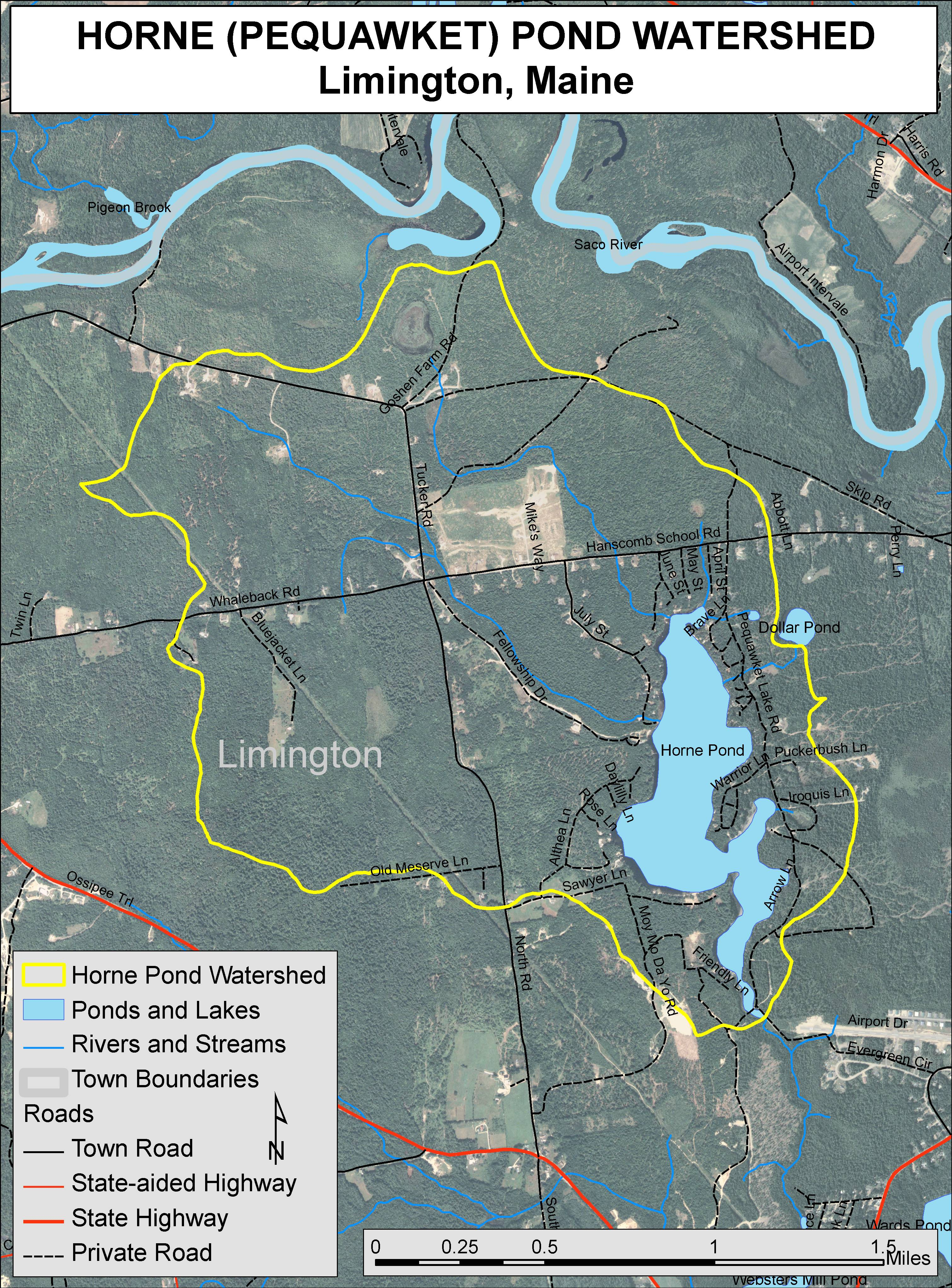 Limington Maine Map.Lakes Of Maine Lake Overview Horne Pond Pequawket Lake