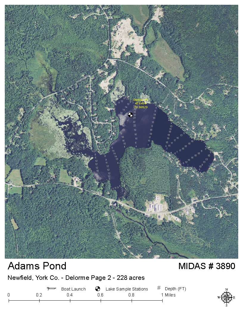 Lakes Of Maine Lake Overview Adams Rock Haven Pond Newfield